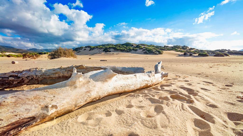 Sanddünen Sardinien Costa Verde