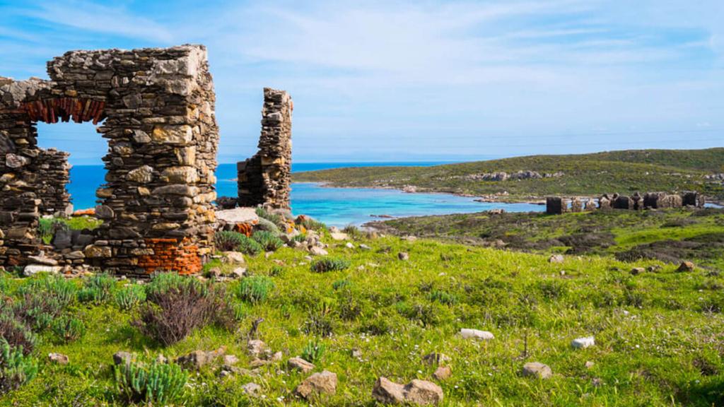 Insel Asinara Sardinien