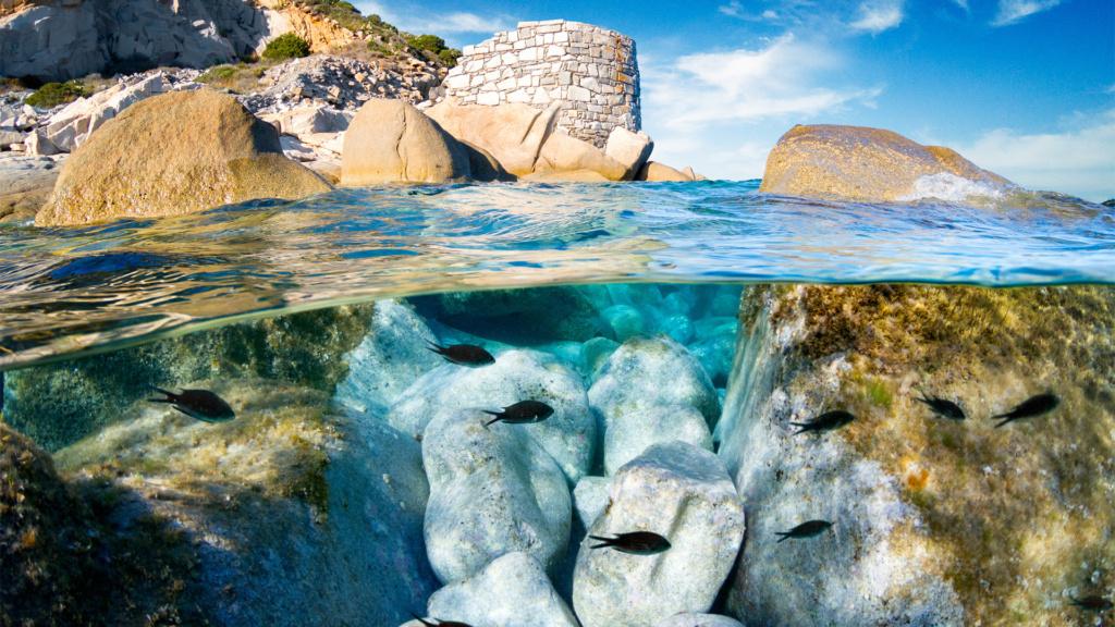 Tauchen auf Sardinien